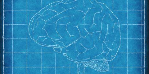Mantener las capacidades cognitivas