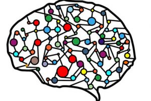 Qué es la plasticidad del cerebro