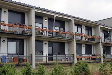 viviendas compartidas en la vejez